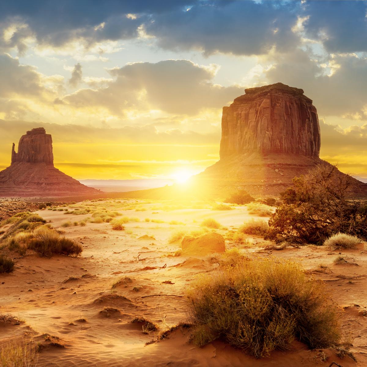 FoDT Desert Verticalrendered